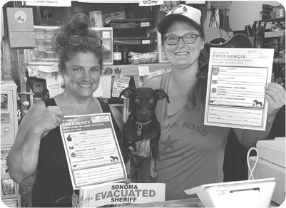 Vacation, stay-cation, or evacuation: tips to keep animals safe